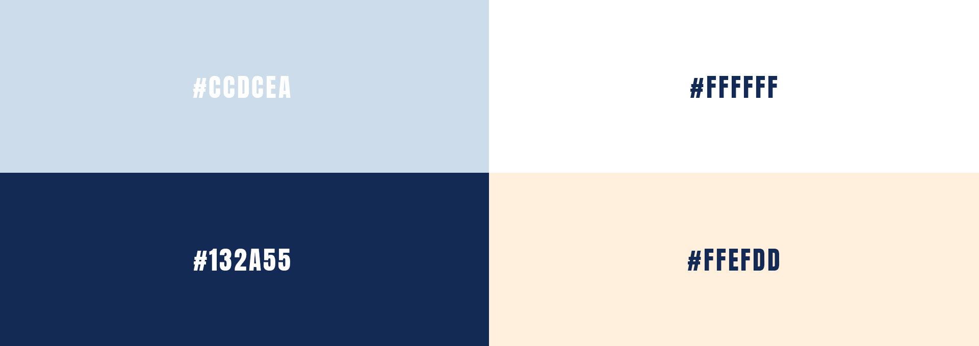 Born Koncept couleurs